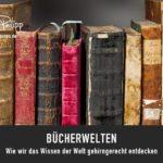 DRACHENSPUREN // BÜCHERWELTEN