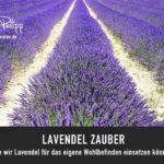 Lavendel Zauber // Drachenspuren - Sakira Philipp