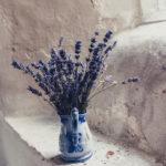 Lavendel // Sakira Philipp - Drachenspuren