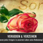 Vergeben & Verzeihen // Blog Drachenspuren Sakira Philipp